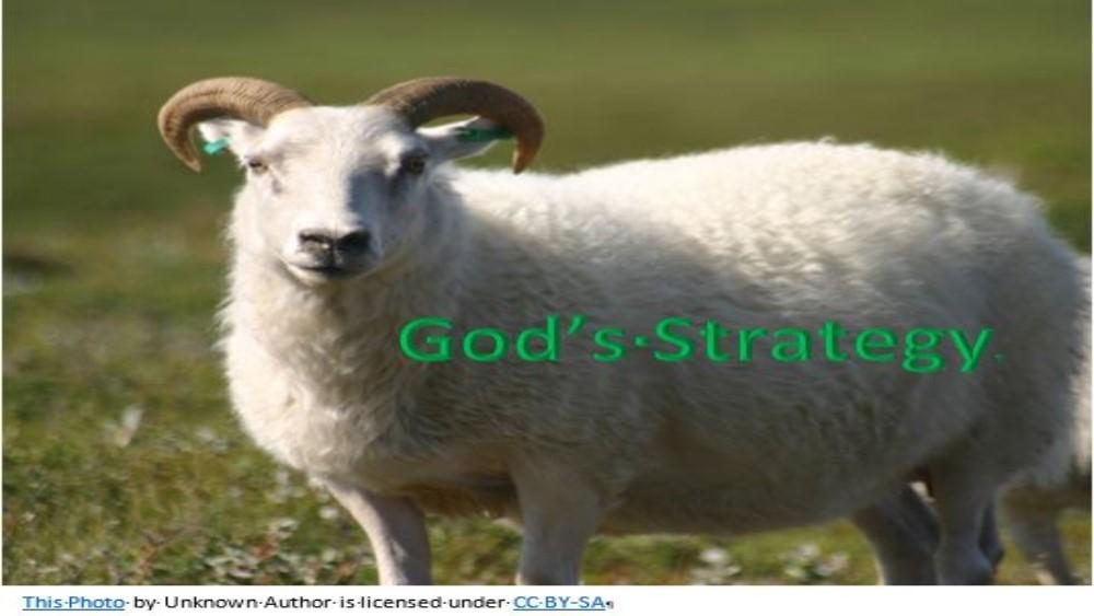 God\'s Strategy